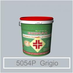 Verde Ossido Lw 61